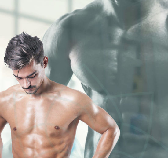 El ayuno y el músculo