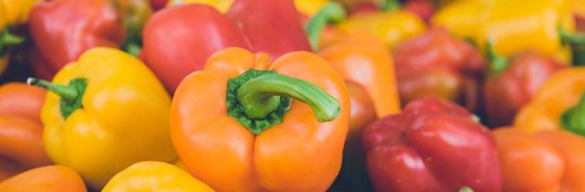 Pimientos morrones antioxidantes